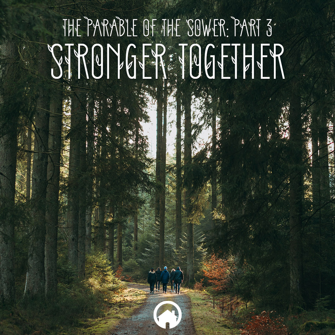 The Parable of the Sower 3: Stronger Together